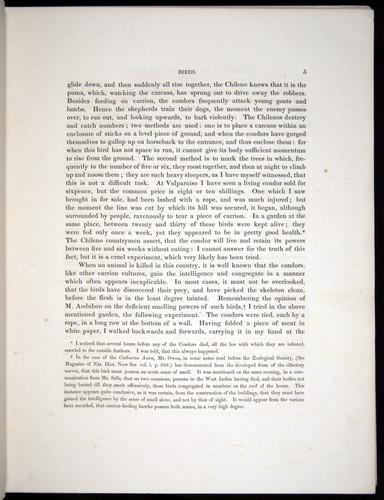 Image of Darwin-F8.2-1838-00005