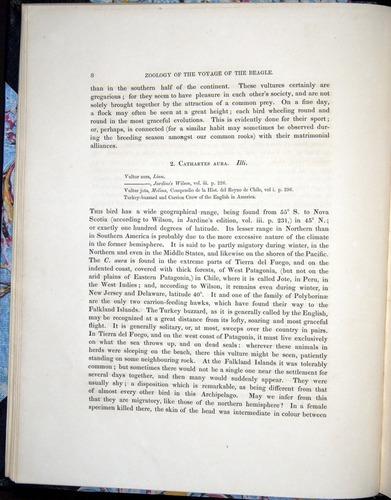 Image of Darwin-F8.2-1838-00008
