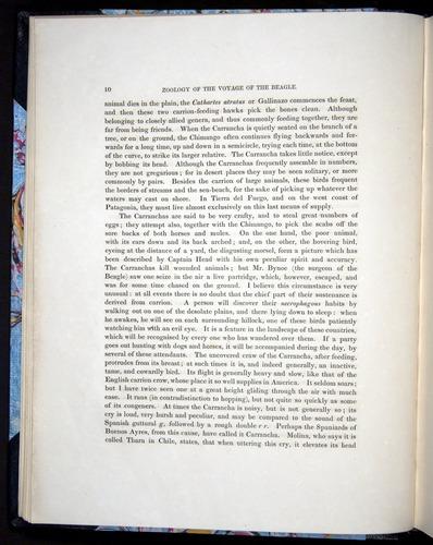 Image of Darwin-F8.2-1838-00010