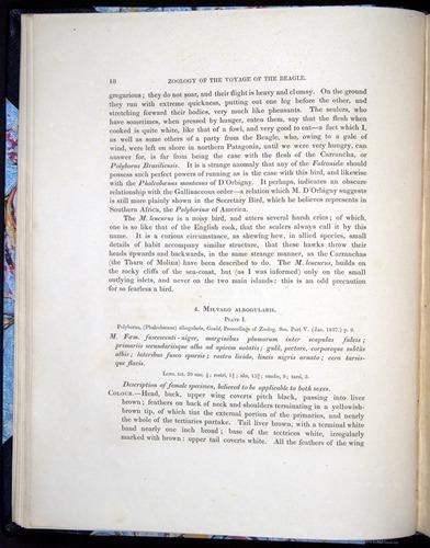 Image of Darwin-F8.2-1838-00018