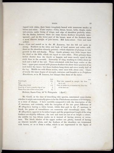 Image of Darwin-F8.2-1838-00019