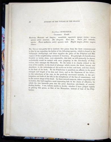 Image of Darwin-F8.2-1838-00022