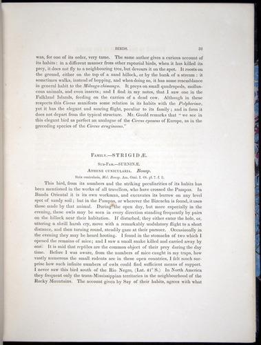 Image of Darwin-F8.2-1838-00031