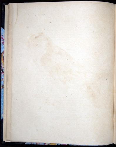 Image of Darwin-F8.2-1838-00032-bf03