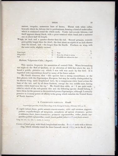 Image of Darwin-F8.2-1838-00037