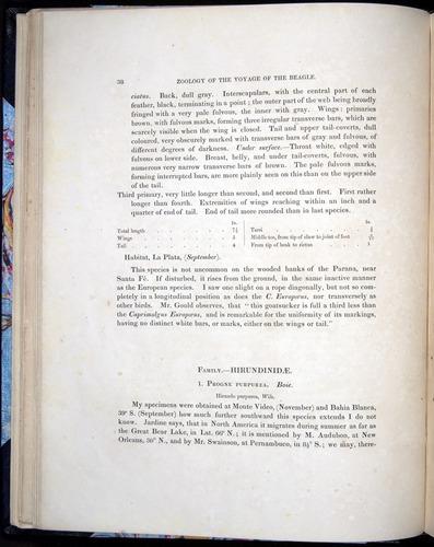Image of Darwin-F8.2-1838-00038