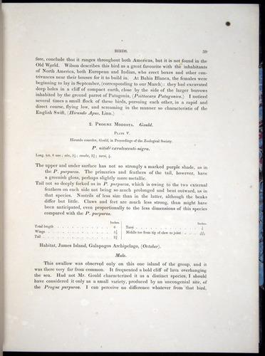 Image of Darwin-F8.2-1838-00039