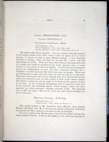 Image of Darwin-F8.2-1838-00043