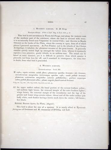 Image of Darwin-F8.2-1838-00047