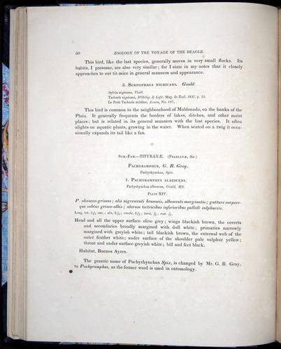 Image of Darwin-F8.2-1838-00050