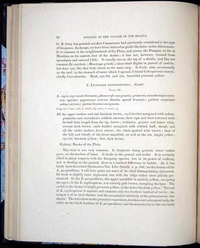 Image of Darwin-F8.2-1838-00052