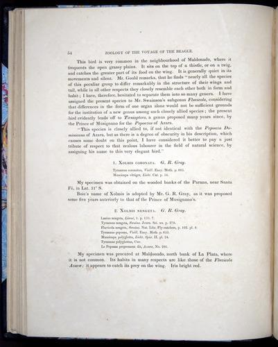 Image of Darwin-F8.2-1838-00054