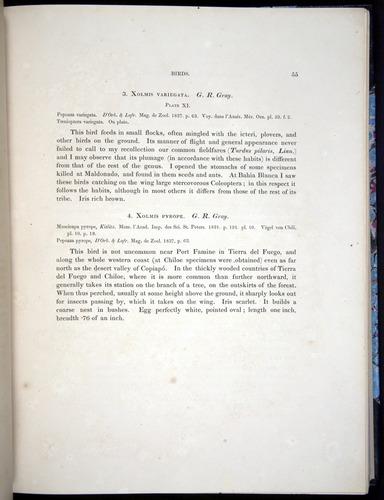 Image of Darwin-F8.2-1838-00055
