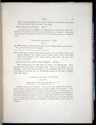 Image of Darwin-F8.2-1838-00057