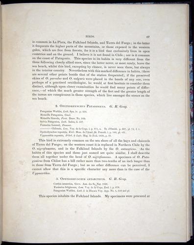 Image of Darwin-F8.2-1838-00067
