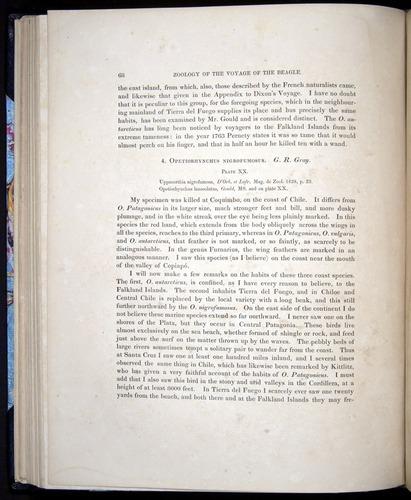 Image of Darwin-F8.2-1838-00068