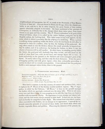 Image of Darwin-F8.2-1838-00071