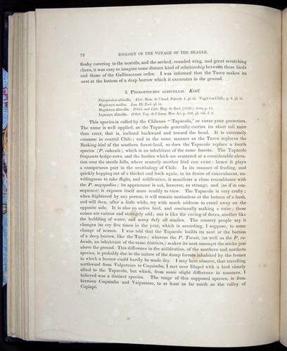 Image of Darwin-F8.2-1838-00072