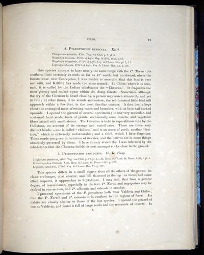 Image of Darwin-F8.2-1838-00073