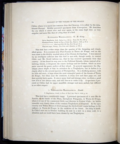 Image of Darwin-F8.2-1838-00074