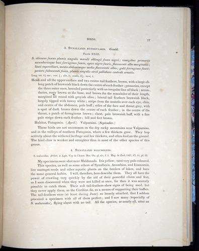 Image of Darwin-F8.2-1838-00077