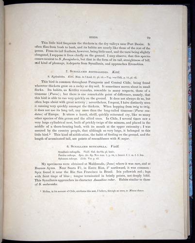 Image of Darwin-F8.2-1838-00079