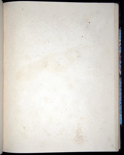 Image of Darwin-F8.2-1838-00080-baf26
