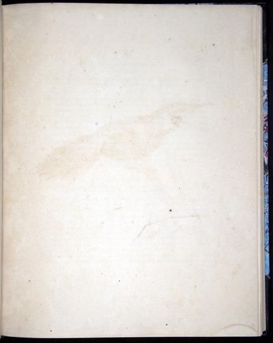 Image of Darwin-F8.2-1838-00080-byf26