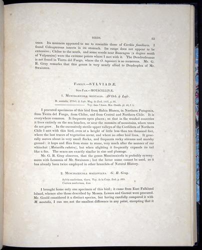 Image of Darwin-F8.2-1838-00083