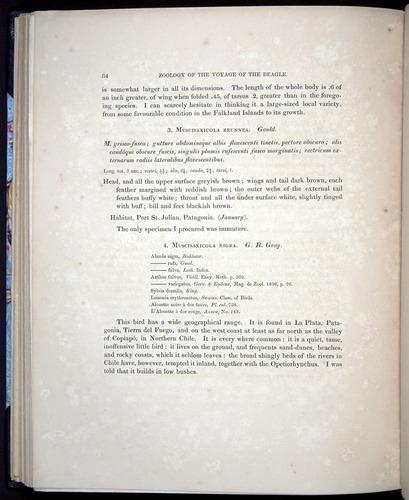 Image of Darwin-F8.2-1838-00084