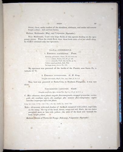 Image of Darwin-F8.2-1838-00089