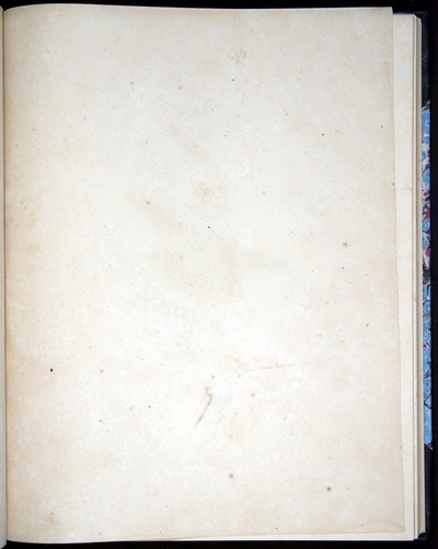 Image of Darwin-F8.2-1838-00090-baf30