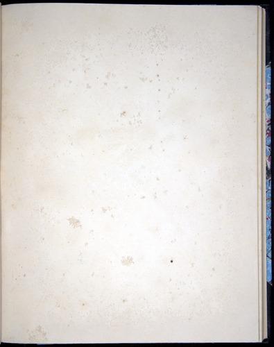 Image of Darwin-F8.2-1838-00090-caf31
