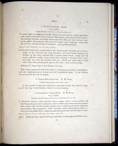 Image of Darwin-F8.2-1838-00091