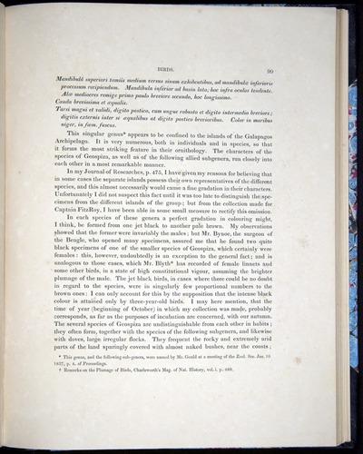 Image of Darwin-F8.2-1838-00099