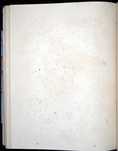 Image of Darwin-F8.2-1838-00100-bzf37
