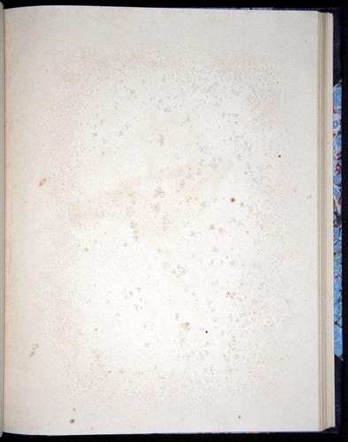 Image of Darwin-F8.2-1838-00100-caf38