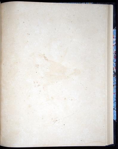 Image of Darwin-F8.2-1838-00102-byf40