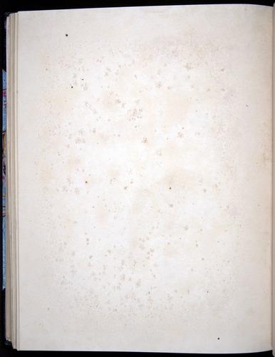 Image of Darwin-F8.2-1838-00104-azf42