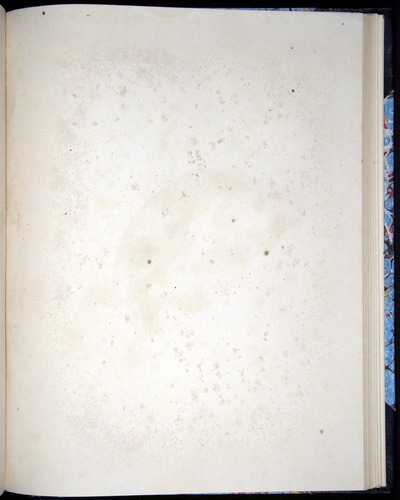 Image of Darwin-F8.2-1838-00104-baf43