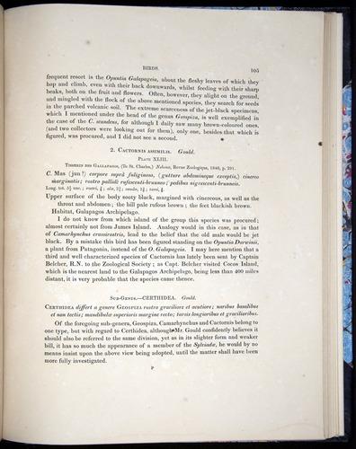 Image of Darwin-F8.2-1838-00105