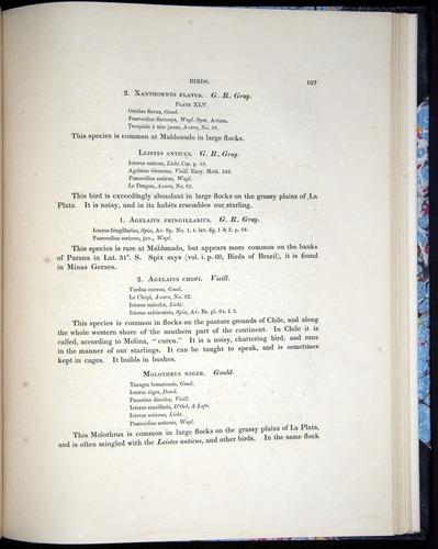 Image of Darwin-F8.2-1838-00107