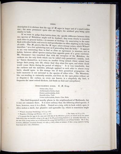 Image of Darwin-F8.2-1838-00109
