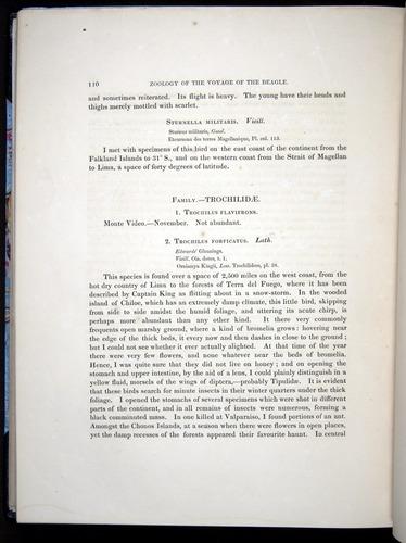 Image of Darwin-F8.2-1838-00110