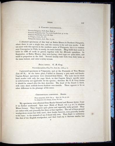Image of Darwin-F8.2-1838-00113