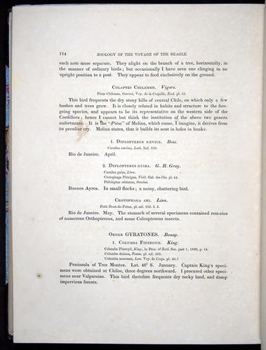 Image of Darwin-F8.2-1838-00114