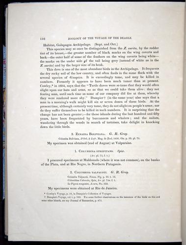 Image of Darwin-F8.2-1838-00116