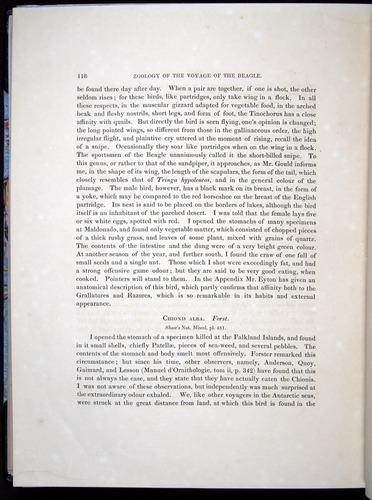 Image of Darwin-F8.2-1838-00118