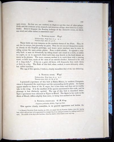 Image of Darwin-F8.2-1838-00119