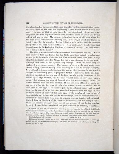 Image of Darwin-F8.2-1838-00122